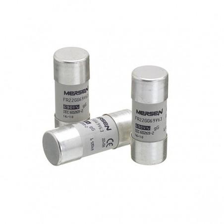Europa FR22GG50V100 100A 400V 22 x 58 mm Cylindrical Fuse gL