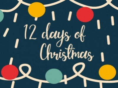 Discount Electrical's 12 days of Christmas!